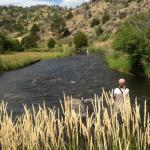Small trout stream near Bozeman, Montana